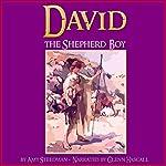 David the Shepherd Boy   Amy Steedman