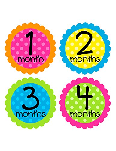 Months in Motion 067 Monthly Baby Stickers Baby Girl Month 1-12 Milestone - 1