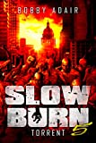 Slow Burn: Torrent, Book 5 (English Edition)