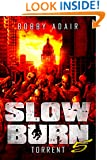 Slow Burn: Torrent, Book 5 (Slow Burn Zombie Apocalypse Series)