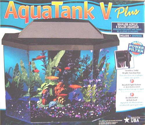 Aquatank v plus 5 gallon seamless acrylic aquarium for Seamless fish tank