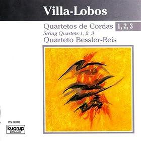 Bessler-Reis cover