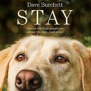 Stay Audiobook