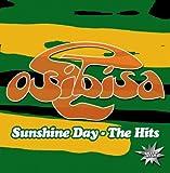 Sunshine Day: Hits