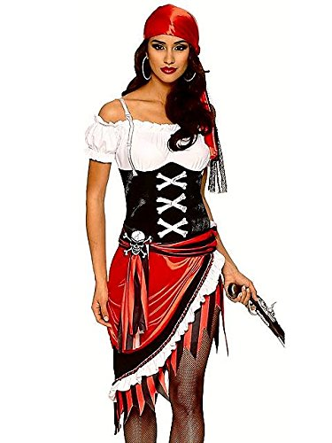 Sexy Pirate Vixen Costume for Women S