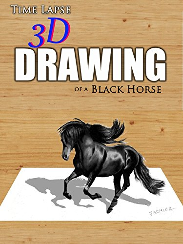 Time Lapse 3D Drawing of a Black Horse