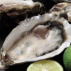 SHUEI 生食用・殻付き牡蠣(ハーフシェルオイスター) 12個セット
