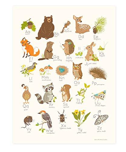 Sea Urchin Studio Alphabet Poster Woodland Forest 12 Quot X