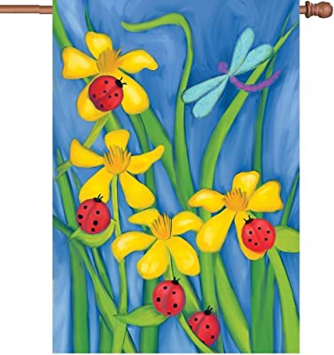 Premier 52302 House Illuminated Flag, Celebrate Summer, 28 by 40-Inch