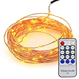 NEWSTYLE 100 LED Lights Copper String 33 Feet Bundle with 12v Adapter and a Remote Control (Warm White)
