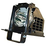 Replacement Lamp with Housing for M