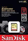 SanDisk Extreme 32GB SDHC UHS-I/U3 Memory Card, Black (SDSDXNE-032G-GNCIN)