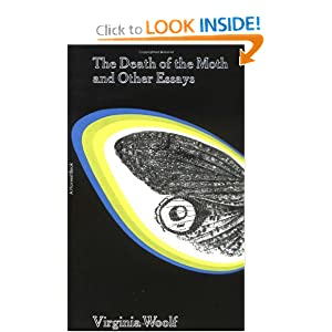 a comparison of the death if the moth by virginia woolf and the way to rainy mountain by scott momad Renderer comparison essay mitigation virginia woolf death of a moth and other college essay momaday essays way rainy mountain catchment.