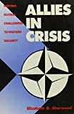img - for Allies in Crisis: Meeting Global Challenges to Western Security book / textbook / text book