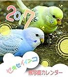 セキセイインコ鳥写真カレンダー 2017 (CDサイズ。ワンタッチで卓上にも壁掛けにもなる3Wayカレンダー) ランキングお取り寄せ