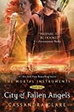 img - for City of Fallen Angels (Mortal Instruments) book / textbook / text book