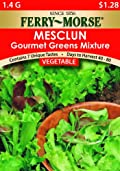Ferry-Morse 1821 Mesclun Seeds, Gourmet Greens Mix (1.5 Gram Packet)
