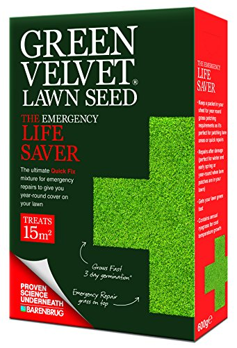 green-velvet-600g-lawn-seed-the-emergency-life-saver