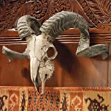 Design Toscano CL3377 Corsican Ram Skull and Horns Wall Trophy