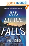 Bad Little Falls (Mike Bowditch Mysteries)