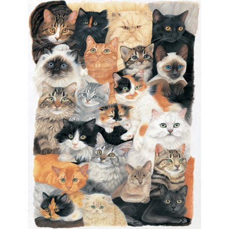 Cheap Sunsout Cat Collage 300 pc (B004HK4FHS)