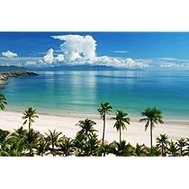 Beach Scene Tropics Pacific Ocean - 24