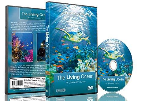 Unterwasser-DVD-Der-lebende-Ozean-Eine-Unterwasser-Reise