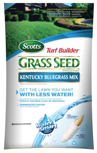 Scotts 18166 Turf Builder Kentucky Bluegrass Grass Seed 3-Pound Bag