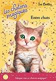 3. Les chatons magiques : Entre chats