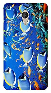 WOW Printed Designer Mobile Case Back Cover For Letv Le One 1 Pro X800