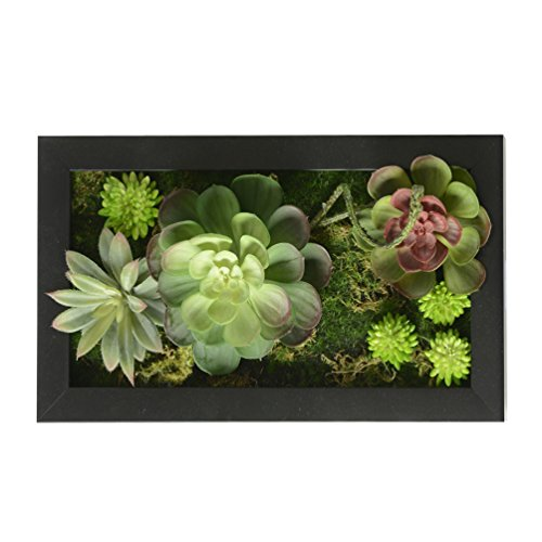 3D House Adornment Metope Wall Decoration Artificial Flowers Succulent plants wedding Decorations living Room Black Frame,7.8 in 13.78 in