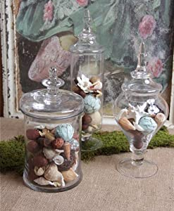 Elegant Transitional Glass Apothecary Jars Canisters