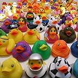 Rhode Island Novelty RDAS100 Rubber Duck
