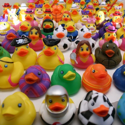 "2"" Rubber Duck Assortment : package of 100"