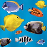 Splash of Colour Marine Tropical Fish Blank Card