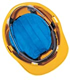 Miracool 968 Hard Hat Cooling Pad