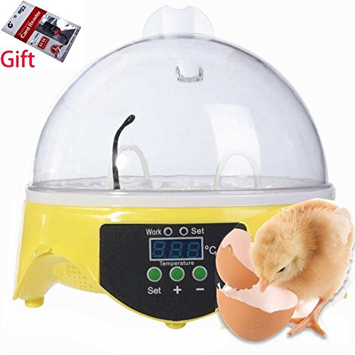 Digital Auto Temperature Small Brooder 7 Mini Egg Incubator Hatchers for Chicken Birds Pigeon Quail (Small Chicken Egg Incubator compare prices)