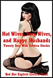img - for Hot Wives, Sexy Wives, and Happy Husbands: Twenty Sexy Wife Erotica Stories book / textbook / text book