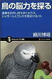鳥の脳力を探る 道具を自作し持ち歩くカラス、シャガールとゴッホを見分けるハト
