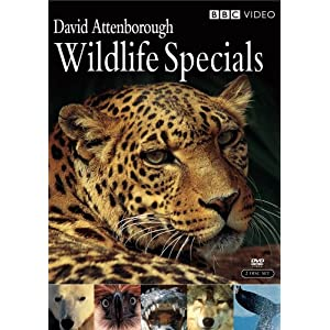 51nTMfGrjGL. SL500 AA300  David Attenborough Wildlife Specials