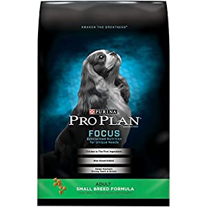 Purina Pro Plan Dry Dog Food, Focus, Adult Small Breed Formula, 35-Pound Bag, Pack of 1