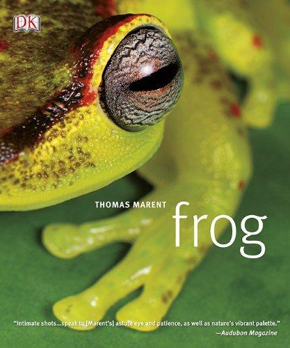 Frog: A Photographic Portrait front-884140