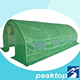 Peaktop® Greenhouse 20' X 10' X 6' Large Outdoor Green House Plant Gardening Garden New