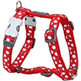 Red Dingo Desinger Dog Harness, White Spots on Red (12mm x Neck: 25-39cm / Body 30-44cm) XS