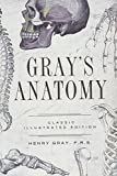 Gray's Anatomy: Classic Illustrated Edition (Fall River Classics)