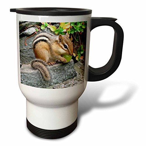 3dRose Chipmunk Travel Mug, 14-Ounce