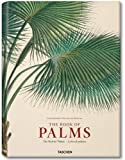 Martius, Book of Palms