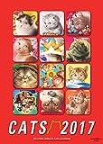 2017年 ビッグコミックオリジナル 村松誠 猫カレンダー ([カレンダー])