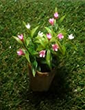 Mini Pink and White Flowers Basket for Fairy Mini Garden Decoration