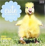 img - for Cute Overload 2015 Wall Calendar book / textbook / text book